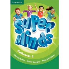 Super Minds Level 2 Flashcards