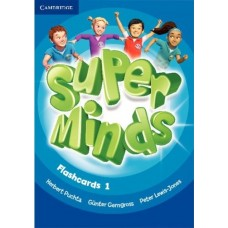 Super Minds Level 1 Flashcards