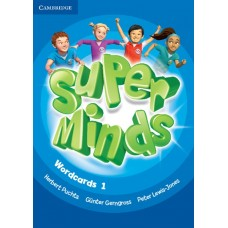 Super Minds Level 1 Wordcards